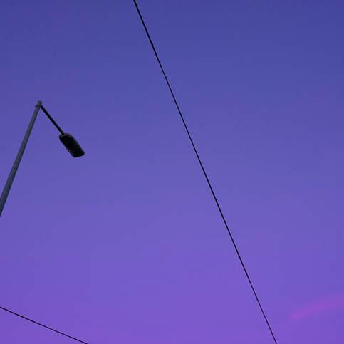 Garden of Boredom - Purple Haze