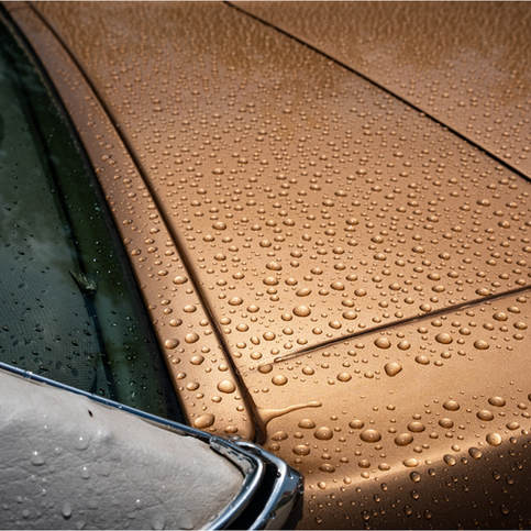 Just Some Raindrops on a Ford