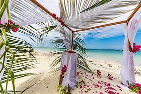 beach-4948790_960_720.jpg