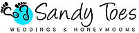 Sandy Toes logo final draft (2).jpg