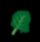 GRAAM pimpeurs de légumes épinard