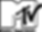 mtv-brand-png-logo-15.png