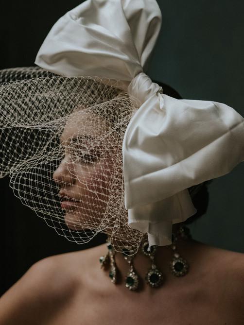 bird cage veil