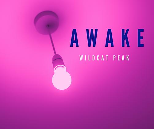 Awake Cover Art.PNG