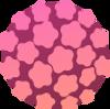 Virus del Papiloma Humano.png