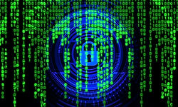 Why having a cyber insurance makes smart business sense