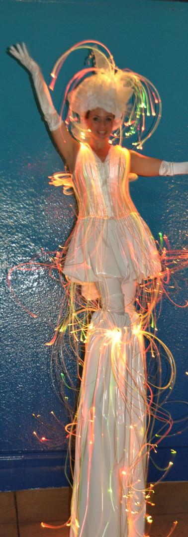 Fiber optic Dress, Night time entertainment