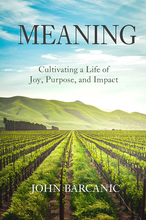 Meaning: Cultivating a Life of Joy, Purpose, and Impact
