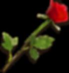 Stingle Stem Rose.png