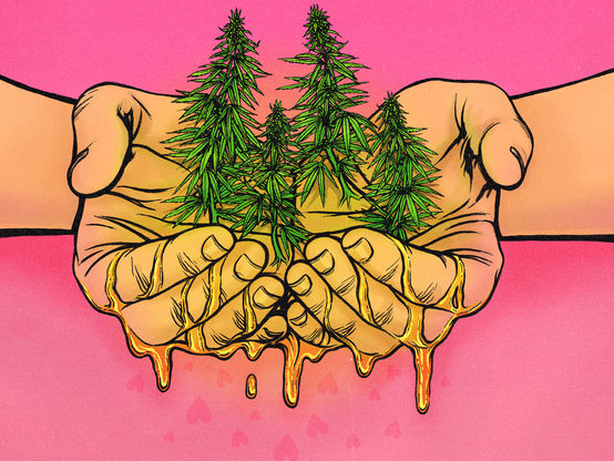 I Give Out Illegal Cannabis Oil for Free
