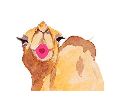 Kissing Camel