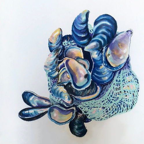 Blue mollusks