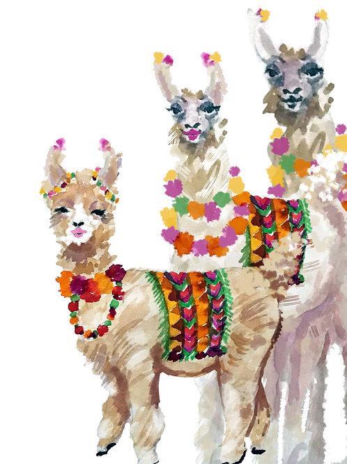 Llama Family