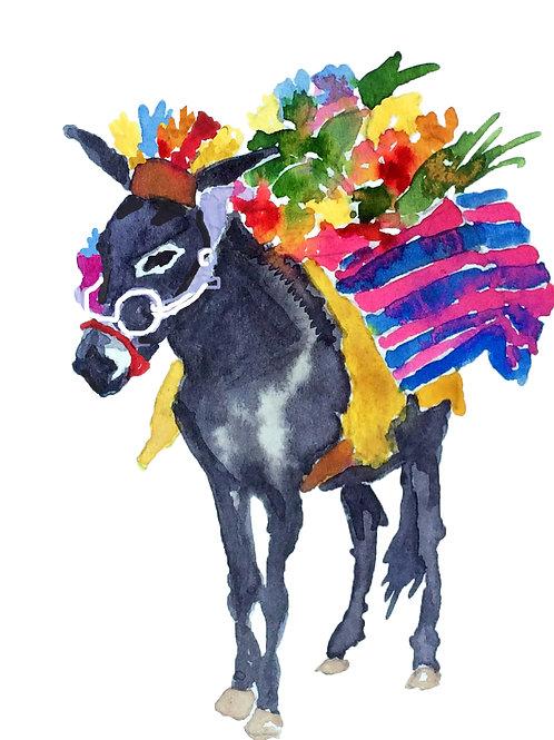 San Miguel Donkey