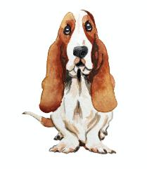 Illustration for Hush Puppies