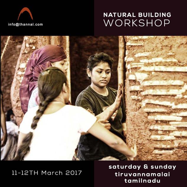 indian natural building workshop.jpg