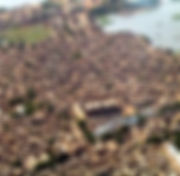aerial djenne.jpg