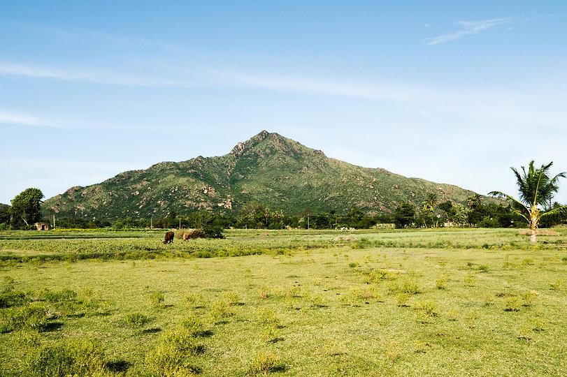 Arunachala.jpg