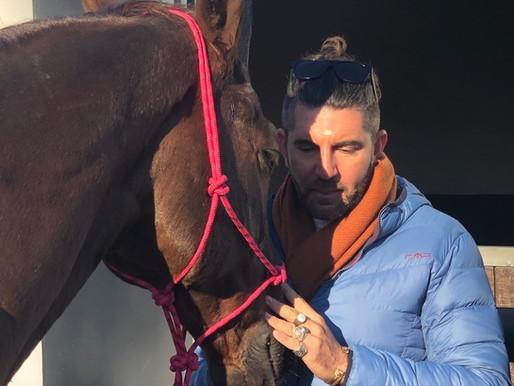 Anahata Horse Healing - November 2018