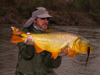 JURAMENTO RIVER - FISHING DAY TRIPS