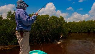 ISLA BLANCA - CANCUN FISHING DAY