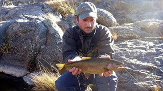 CORDOBA - MOUNTAIN TROUT