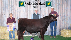 2019 Colorado State Fair