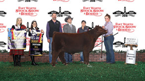 2019 Fort Worth Stock Show