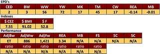 PV Journey bull stats.png