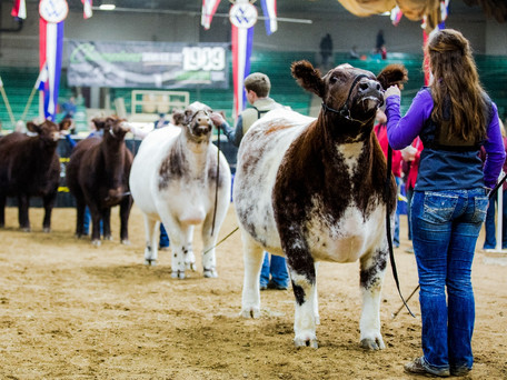 2017 NATIONAL WESTERN STOCK SHOW