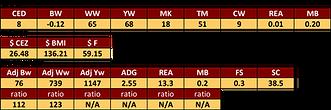 PV GRID MASTER bull stats.png