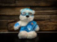 Toh Wei Soong teddy.jpg
