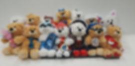 Teddy series.jpg