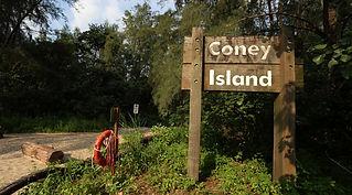 Coney Island 1.jpg