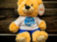 Generic-Bear_small.jpg