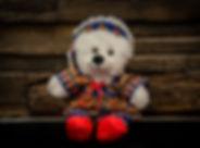 Chew Zi Ling teddy.jpg