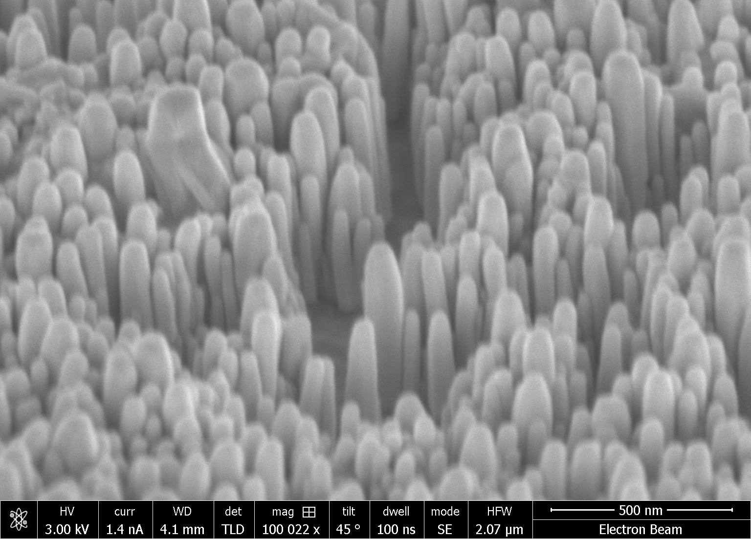 Growing ZnO nanorods