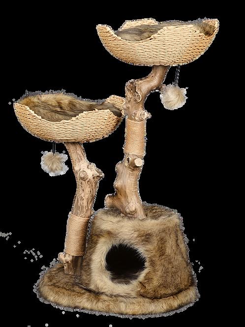 מתקן גירוד מעץ טבעי לחתולים