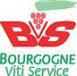 logo_bvs.jpeg