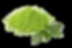 Green-Tea-PNG-Pic.png
