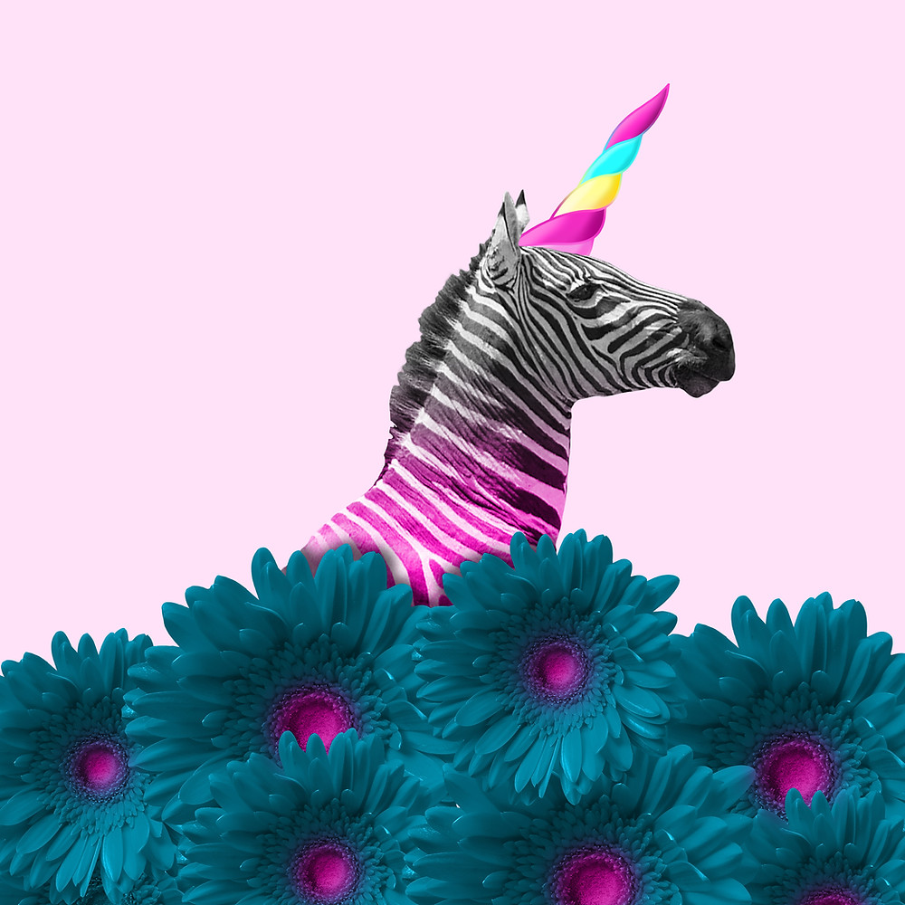 Pink zebra with unicorn horn daring to be different (with his content marketing...!)