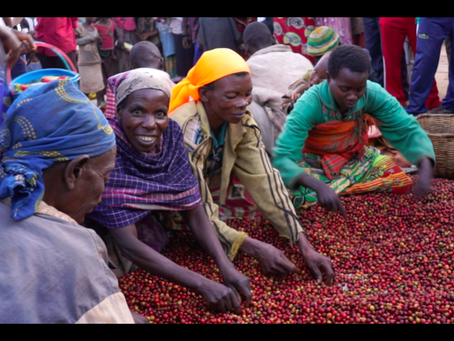Celebrate #NationalCoffeeDay all month with Burundi microlot support for women farmers