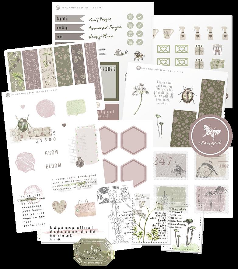 June Sticker Subscription - Nature theme