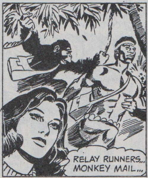 "The Monkey Mail, as featured in ""The Cave Lands"" 1975"