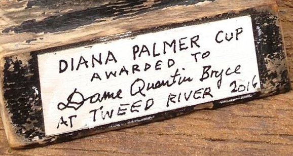 Diana Palmer Cup