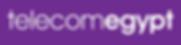 Telecom Egypt Logo.png