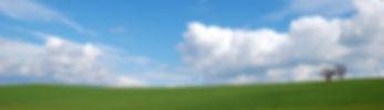 Blue Sky Crop_large.jpg