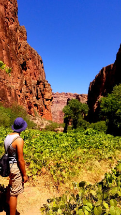 Day hike to Mooney Falls