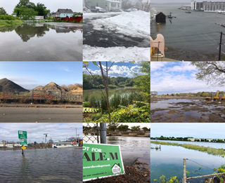 environment collage.png