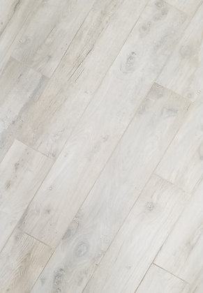 419962 - Woodlands Maple